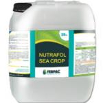 Nutrafol Sea Crop