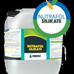 Nutrafol Silikate