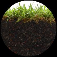 mejoradores-de-suelo